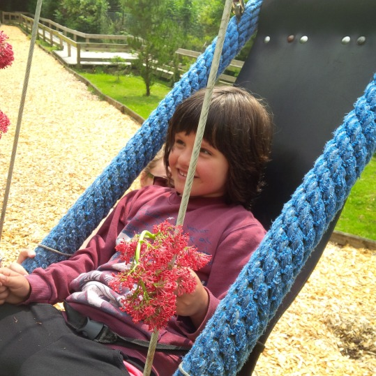 child playing in accessible swing